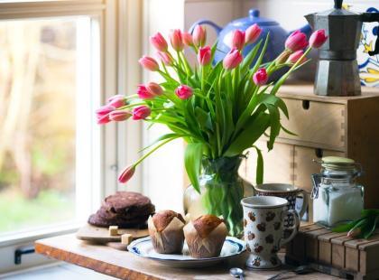 Tulipany W Bukiecie Jak O Nie Dbać Aby Długo Stały