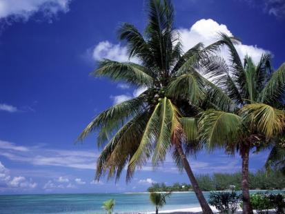 Poznaj najpiękniejsze wyspy świata