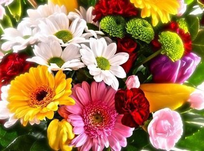 Poznaj znaczenie kwiatów i kup bukiet na Dzień Kobiet!
