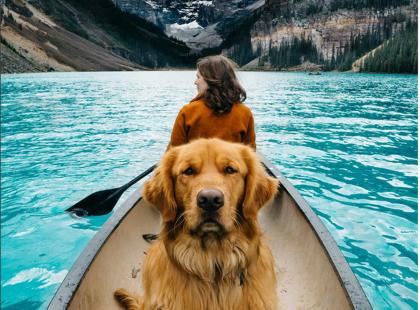 Poznajcie Aspena, 4-letniego psa podróżnika, który podbił serca 190 tys. instagramowiczów