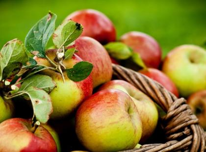 Prażone jabłka do szarlotki i innych wypieków