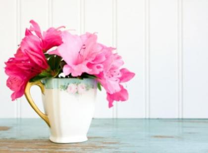 Przedpokój pełen kwiatów