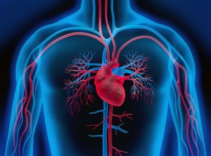 Przełom w badaniach nad wykorzystaniem komórek macierzystych u pacjentów po zawale serca