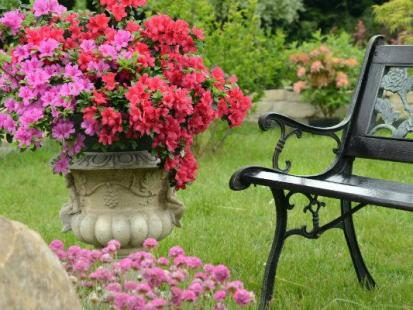 Przepis na idealny ogród