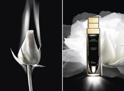 Regeneracyjna moc róży w nowym serum Diora na noc