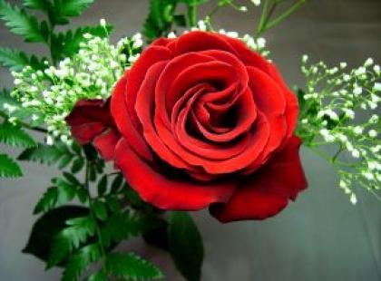 Romantyczni po pięćdziesiątce - Miłość po pięćdziesiątce