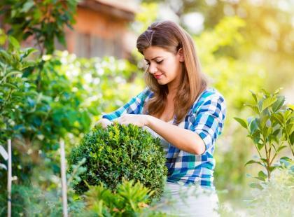 Roślinni terapeuci – jak kwiaty i drzewa wpływają na nasze zdrowie?
