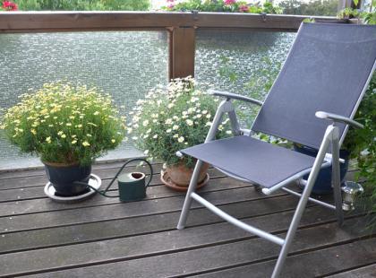 Rośliny idealne do trzymania na balkonie!