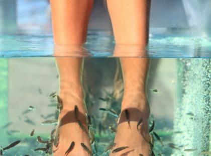 Rybi pedicure, czyli fish foot spa