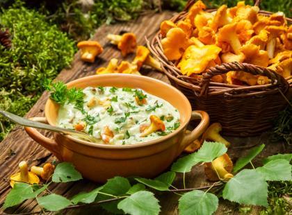 Są już pierwsze zbiory grzybów! Przygotuj doskonały sos kurkowy, który nie jest gorzki!