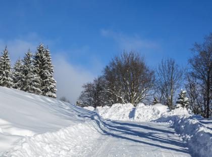 Są kolejne ofiary srogiej zimy, a bilans ciągle rośnie