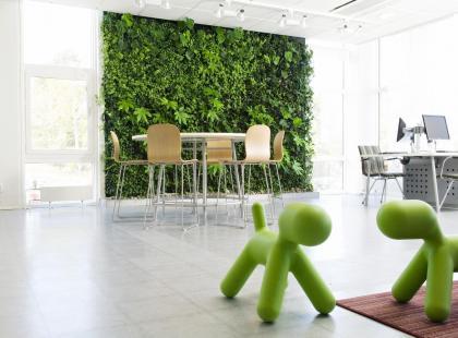 Ściana zieleni, czyli natura we wnętrzu