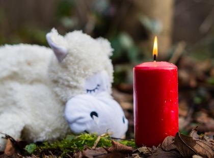 Seria pobić dzieci w Łodzi! 4-letnią Oliwię matka przyniosła do szpitala już martwą, krótko później do poradni zgłosiła się matka z trzymiesięcznym niemowlęciem. Dziecko ma liczne obrażenia.