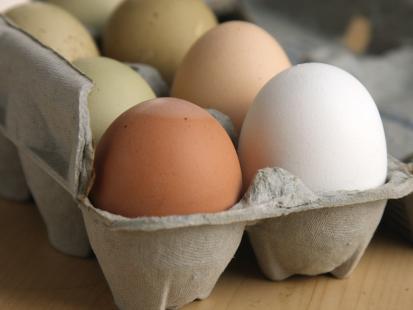 Skażone jajka w popularnych sieciach sklepów spożywczych. Inspekcja Weterynaryjna wydała decyzję o wycofaniu partii z obrotu