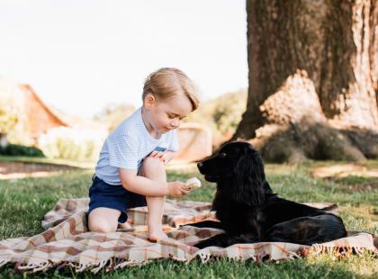 Słodki księciunio kończy dziś 4 lata. Zobaczcie zabawne momenty i najlepsze minki księcia George'a!