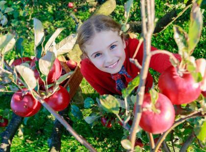 Smaki dzieciństwa – czy owoce i warzywa były kiedyś smaczniejsze?