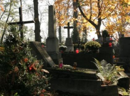 Spacer cmentarną aleją…