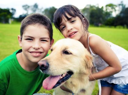 Sprzątanie po psie - obowiązek czy wolny wybór?