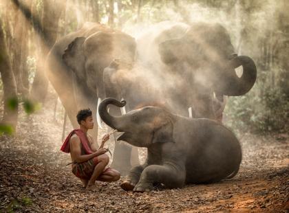 Sri Lanka – perła Oceanu Indyjskiego