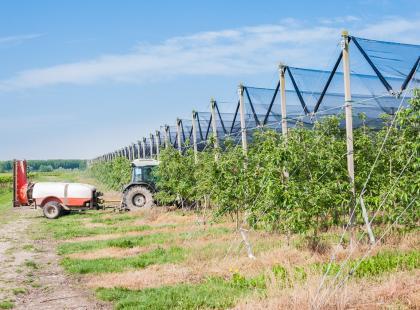 Środki uprawy roślin – dlaczego i na jakich zasadach się ich używa?
