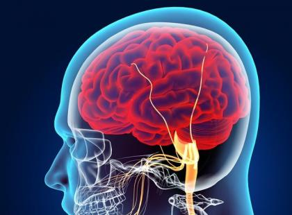 Stres powoduje zmiany w mózgu?