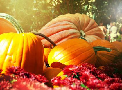 Świeżo, zdrowo, sezonowo - postaw na jesienne warzywa