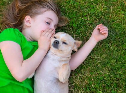 Szczepienia psów - poradnik