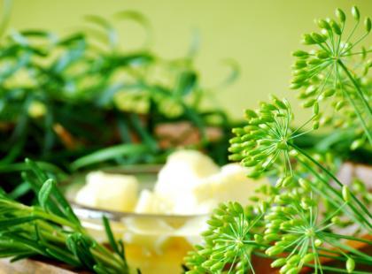 Szczypiorek i koperek - zioła prosto z ogródka