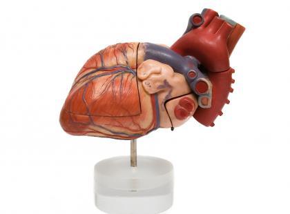 Sztuczne serce