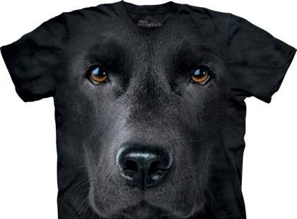 T-shirt z psią mordą - kolekcja The Mountain