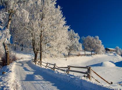 Te zdjęcia sprawią, że pokochasz zimę. Nawet tę w Polsce.
