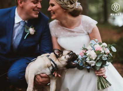 Te zdjęcia to prawdziwe ślubne działa sztuki z nutką humoru! Zobacz fotografie, które wygrały Nikon Award 2016