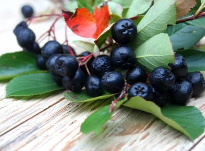 Ten owoc uchroni cię przed rakiem!