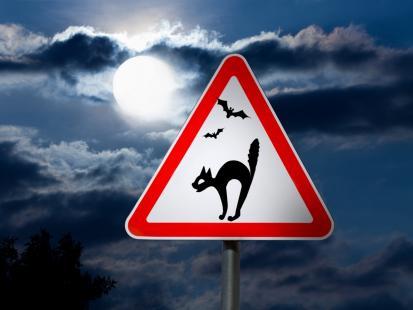 To nie żart: już wkrótce w Polsce mogą pojawić się znaki drogowe z kotami. Po co?
