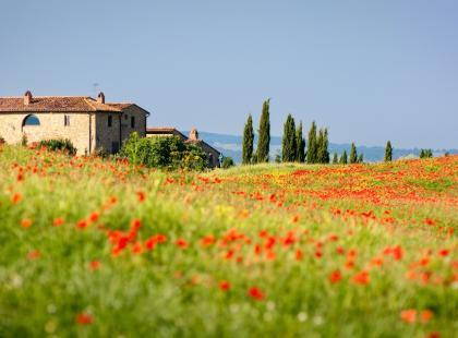 Toskania – la dolce vita