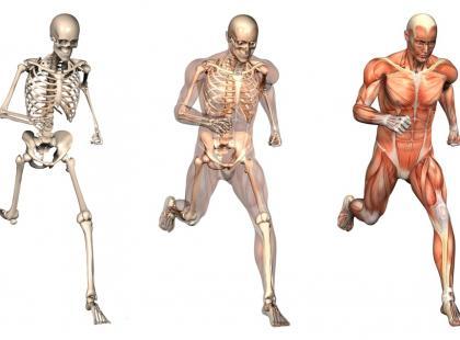 Trening podbiegowy – drugi etap biegania