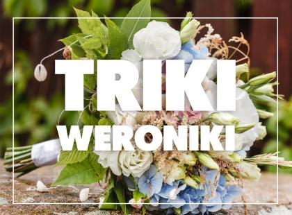 Triki Weroniki: Jak przedłużyć trwałość ciętych kwiatów?