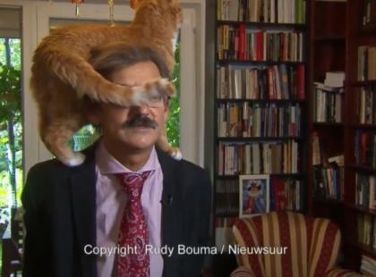 W czasie telewizyjnego wywiadu kot chodził po ramionach eksperta. Trudno się nie uśmiechnąć, oglądając to nagranie!