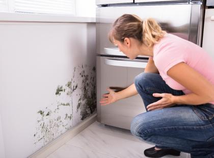 W twoim mieszkaniu panuje wilgoć? Pochłaniacz wilgoci rozwiąże problem zniszczonych mebli i przedmiotów!