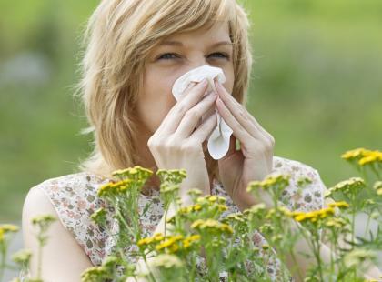 W tym roku alergicy będą mieli wyjątkowo ciężko