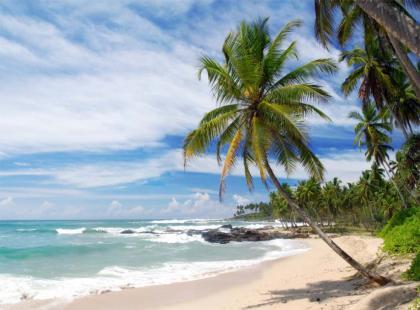 Wakacje na Sri Lance