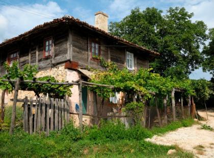 Wina z Bułgarii - gatunki i produkcja