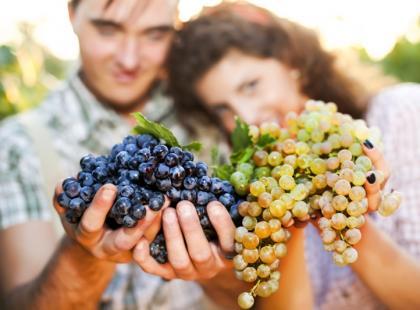 Winogrona - kalorie i właściwości dla zdrowia