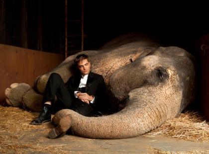 Woda dla słoni (reż. Francis Lawrence)