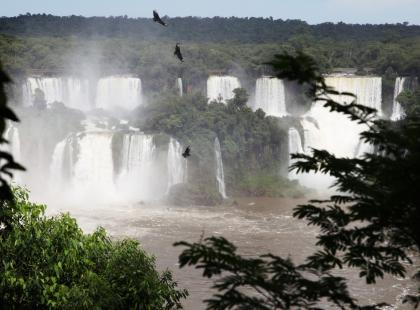 Woda, słońce i setki tęcz. Jak wyglądą na żywo wodospady Iguacu w Ameryce Południowej? Zobacz nagranie Beaty Pawlikowskiej