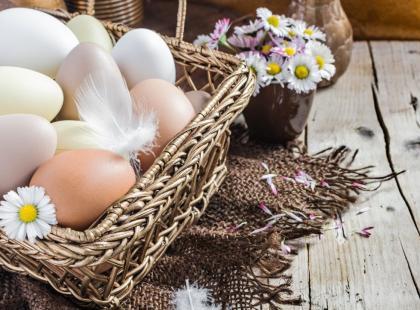 Wow! 5 informacji na temat jajek, o których do tej pory nie miałaś pojęcia