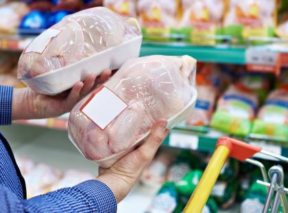 Wstrząsające wyniki raportu NIK: 80% kurczaków i indyków, które jemy, zawiera w sobie antybiotyki