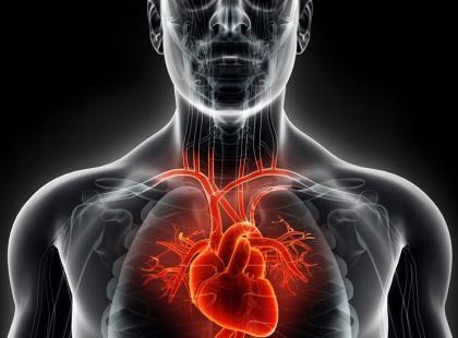 Zabieg TAVI – ratunek dla starszych pacjentów ze zwężeniem zastawki aortalnej