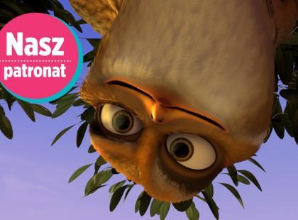 """""""Zambezia"""" - nowy film twórców Madagaskaru"""
