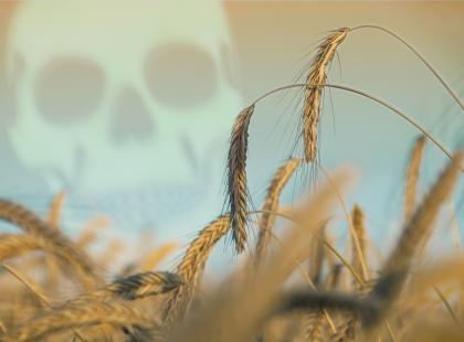 Zanieczyszczenia w żywności  – jak się przed nimi chronić?